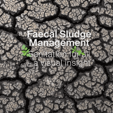 Faecal Sludge Management: Sanitation for all - a visual insight (photo book)